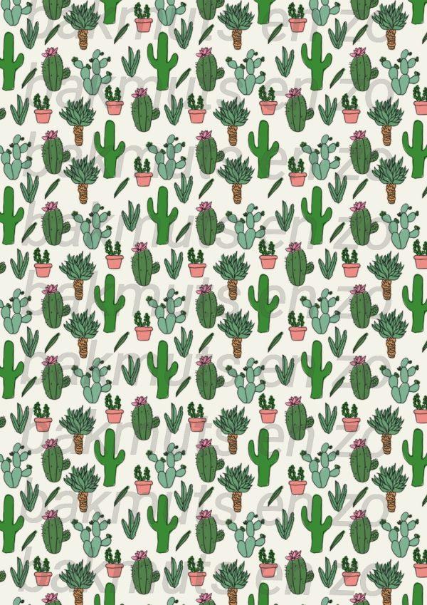 cactus-achtergrond.jpg