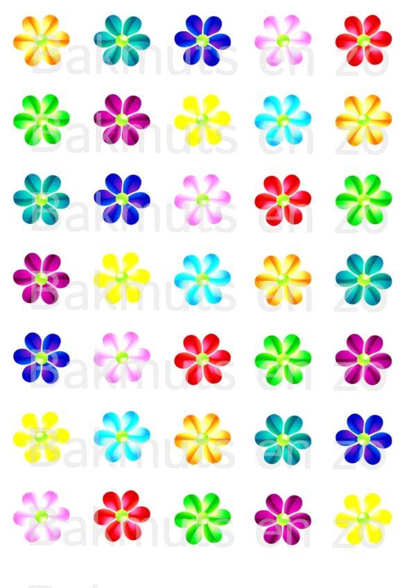 lollie-bloemen.jpg