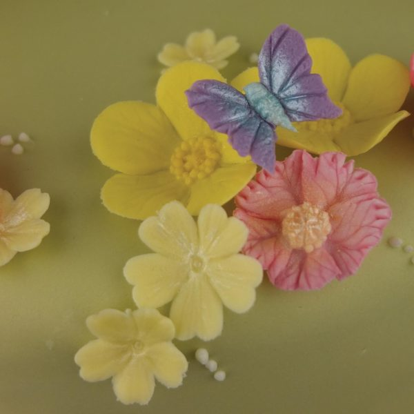 blossom sugar art butterfly collection 3